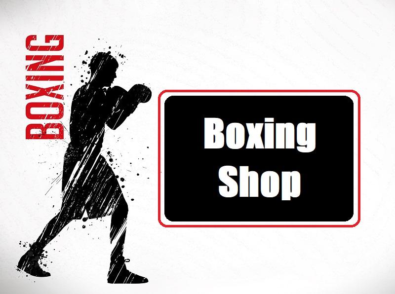 Kubrat Pulev Boxing Record